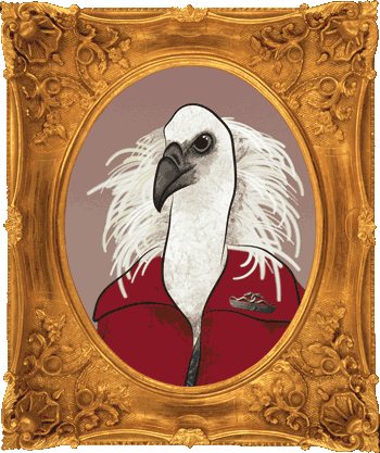Griffon Vulture frame